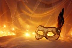 Bild av elegant venetian, maskering över tyllbakgrund Royaltyfri Foto