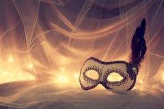 Bild av elegant venetian, maskering över tyllbakgrund Royaltyfri Fotografi