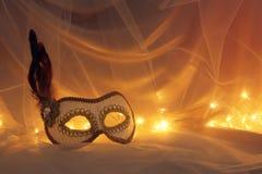Bild av elegant venetian, maskering över tyllbakgrund Royaltyfria Bilder