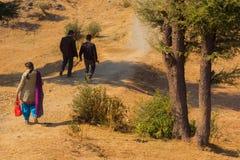 Bild av en indisk familj som tar en promenad på en bergstopp bland träd Bilden visar en fader, modern och deras son som går ner a arkivfoton