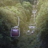 Bild av en kabelbil i bergen som kör till och med ett skogG Royaltyfri Bild