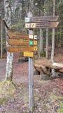 Bild av en teckenstolpe i den bayerska skogen (Tyskland) Royaltyfria Foton