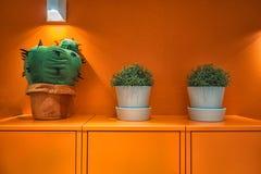 Bild av gröna växter på det gula kabinettet med den gula väggen på bakgrunden Royaltyfria Bilder