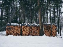 Bild av högen av trä med insnöat skogen i vintern arkivfoton