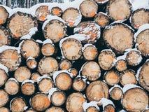Bild av högen av trä med insnöat skogen i vintern arkivfoto