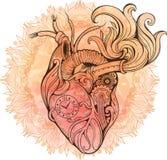 Bild av hjärta i steampunkstil Vattenfärgbakgrund med fl Arkivfoton