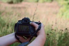 Bild av kvinnliga händer med en kamera royaltyfri foto