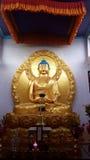 Bild av Lord Buddha Royaltyfri Foto