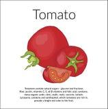Bild av saftiga röda tomater stock illustrationer