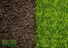 Bild av textur för jord och för grönt gräs naturlig textur Över huvudet sikt Bakgrund för vektorillustrationnatur Royaltyfri Bild