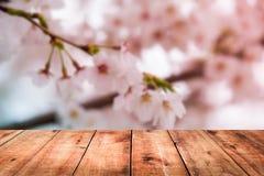 Bild av trätabellen framme av bakgrund för körsbärsröd blomning Royaltyfri Bild