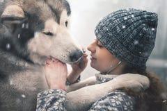 Bild av unga flickan som matar hennes hund, alaskabo malamute som är utomhus- royaltyfri bild