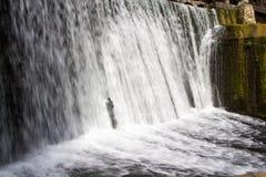 Bild av vattenfallet med att skumma vatten Royaltyfri Foto