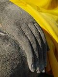 Bild Ayuttaya Buddha Stockfoto