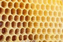 Bild der Bienenwabe Background stockbilder