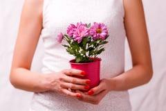 Bild der Frau Topf mit rosa Blume halten Stockfoto