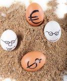 Bild der großen weißen Eier mit dollarand Eurozeichen auf einem Sand Stockfotografie