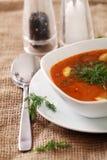 Bild der Schüssel heißer roter Suppe diente mit dem Salz, dem Pfeffer und dem s Lizenzfreie Stockfotografie