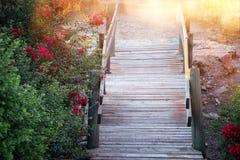 Bild der träumerischen alten Holztreppe im Wald Lizenzfreies Stockfoto