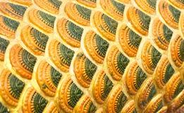 Bild der Wand-Beschaffenheit Schönes Dracheskalamuster stockfotos