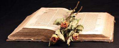 Bild des alten Öffnenbuches Stockbilder