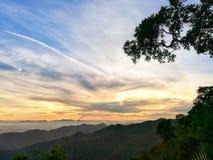 Bild des Baums und des Himmels in der Sonnenaufgangzeit Stockbilder
