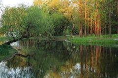 Bild des Herbstparks mit den roten und gelben Bäumen und des Sees im Shanghai lizenzfreie stockfotografie