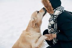 Bild des Hundes Tatze gebend der Frau in der schwarzen Jacke auf Winter Lizenzfreies Stockfoto
