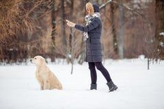 Bild des Mädchens im schwarzen Jackentrainingshund im schneebedeckten Park Lizenzfreies Stockbild
