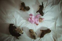 Bild des netten kleinen Mädchens in der rosa Klage und in den Welpen Lizenzfreie Stockfotos