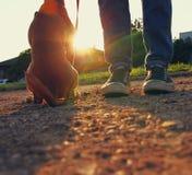 Bild des niedrigen Winkels der Person mit seinem Hund Lizenzfreie Stockfotos