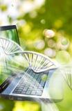 Bild des Notizbuches auf DNA verkettet Hintergrund Stockbild