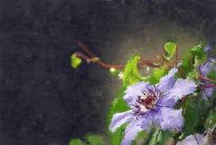 Purpurroter Clematis lizenzfreie abbildung