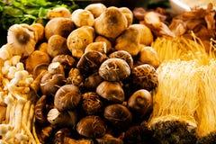Bild des verschiedenen Pilzes Lizenzfreie Stockfotos