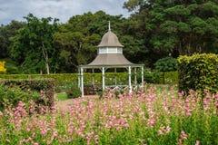 Bild eines Gazebo in botanischen Gärten Wollongong, Wollongong, New South Wales, Australien lizenzfreie stockbilder