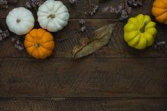 Bild för bästa sikt för tabell flyg- av den lyckliga allhelgonaafton- eller tacksägelsedagen för garnering fotografering för bildbyråer