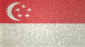 Bild för original 3D, flagga av Singapore stock illustrationer