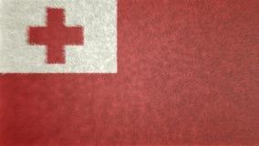 Bild för original 3D, flagga av Tonga stock illustrationer