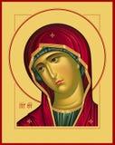 Bild för oskuldOplechnaya röd raster Royaltyfri Foto