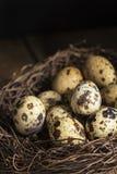 Bild för stil för lynnig tappning för naturlig belysning retro av quaillsägg Royaltyfri Bild