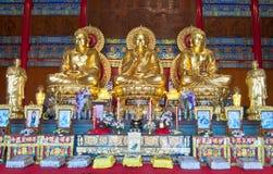 Bild för tre buddha Arkivfoton