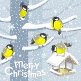 Bild för vektorjulfåglar och birdfeederjul vektor illustrationer