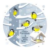 Bild för vektorjulfåglar och birdfeederjul stock illustrationer