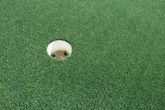 Bild från en frodig golfbana Fotografering för Bildbyråer