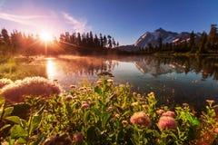 Bild Lake Royaltyfri Fotografi