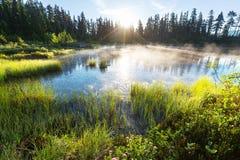 Bild Lake arkivfoton