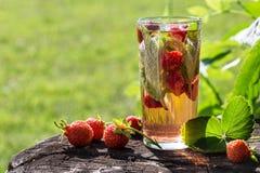 Bild med en drink royaltyfri bild