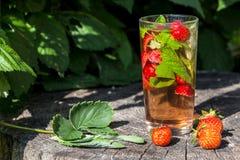 Bild med en drink royaltyfri foto