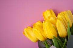 Bild mit Blumen Set von 9 Abbildungen der wundervollen mehrfarbigen Tulpen stockfoto