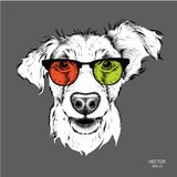 Bild-Porträtbulldogge in der Krawatte und mit Gläsern Auch im corel abgehobenen Betrag Stockfotografie